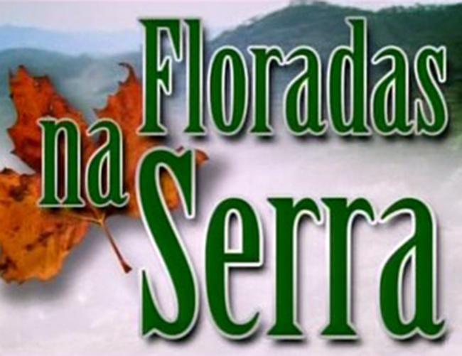 Floradas na Serra (1981)